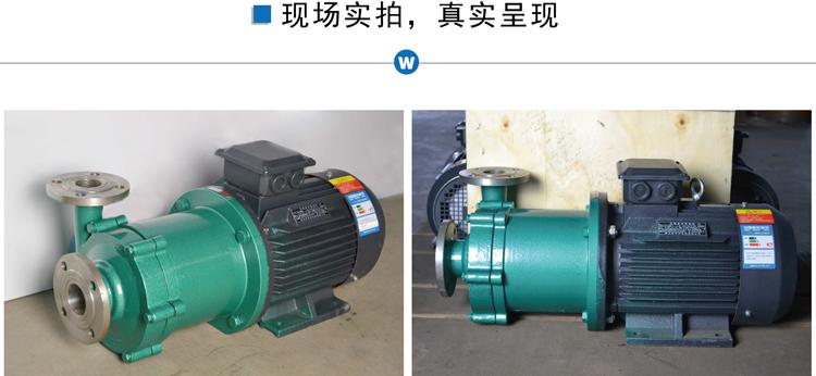CQ不锈钢磁力泵图片